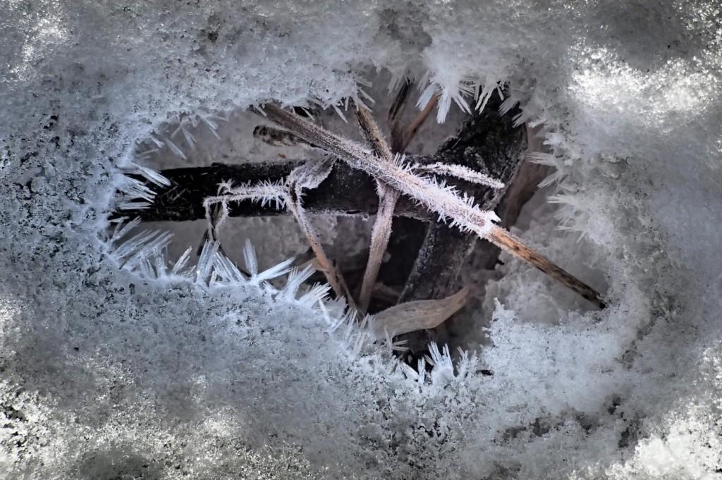 Frozen Mouse Hole