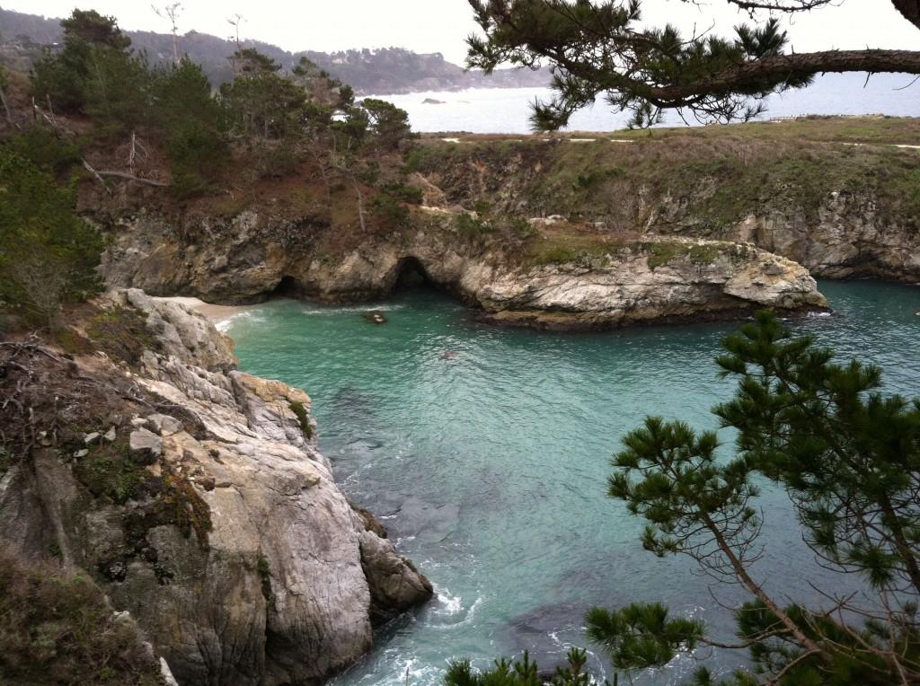 China Cove -Wade