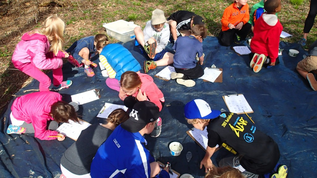 Second grade Schoolyard Nature Hike
