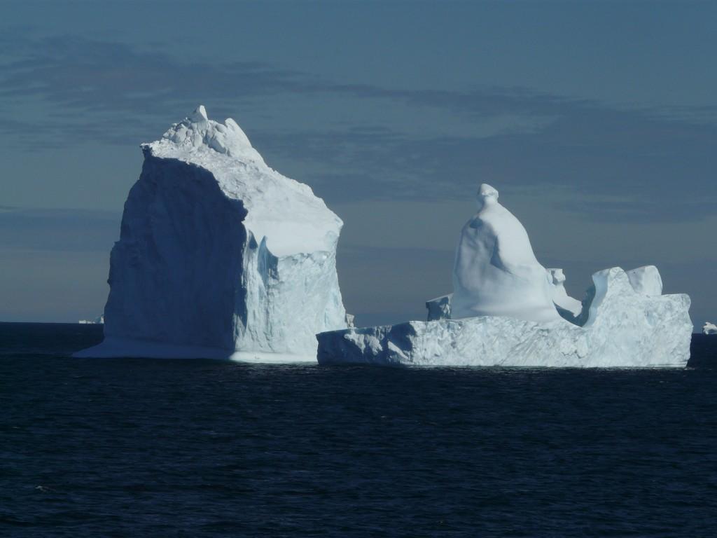 Antarctica is calling.....